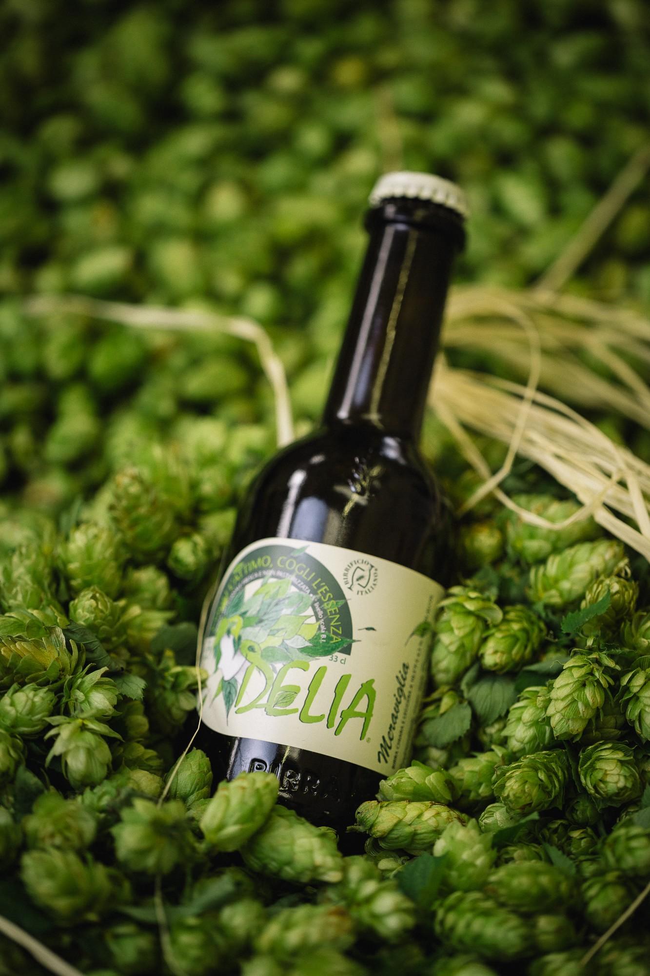 Delia meraviglia birre senza glutine